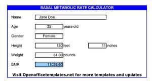 bmr calculator kg